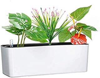 Elongated Self Watering Planter Pots Window Box with Coconut Coir Soil 5.5 x 16 inch Indoor Home Garden Modern Decorative Planter Pot for All House Plants Flowers Herbs (1, White(5.5