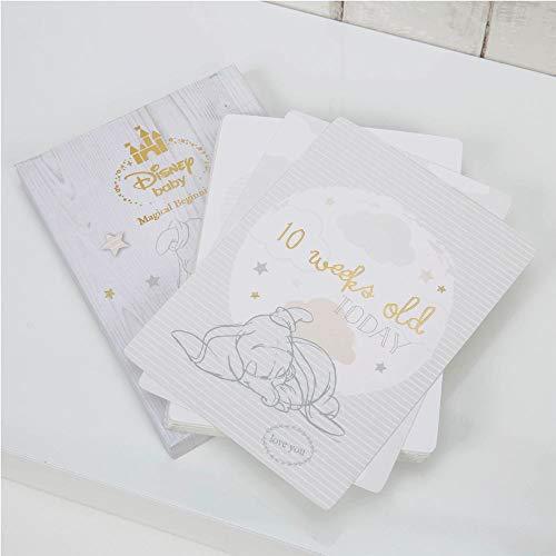 Disney Baby Dumbo 24 cartes pour photos souvenirs