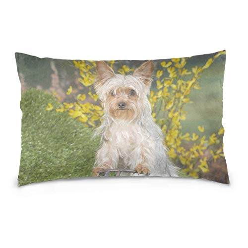 AEMAPE Yorkie Dog Rides Bicicleta Throw Pillow Cover Funda de cojín Funda de Almohada Decorativa con Cremallera Invisible 50X75 Cm
