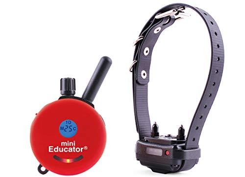 Mini Educator E-Collar ET-300 / ET-302 Dog Training Collar System with Remote - 1/2 Mile Range - Waterproof, Vibration, Sensation - Includes eOutletDeals Pet Towel (1 Dog System - ET-300 RED)