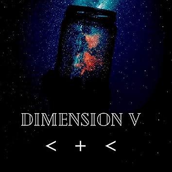 Dimension V