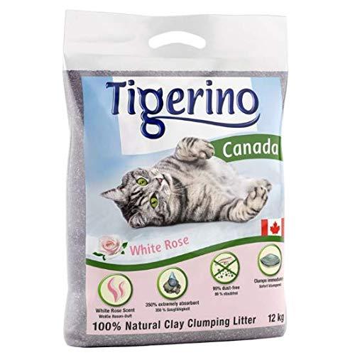Tigerino - Lettiera per gatti Canada, molto assorbente, fragranza alla rosa bianca, 24 kg