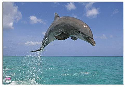 Veloflex 4650085 Schreibunterlage 35x50 cm, Delfin, 1 Stück