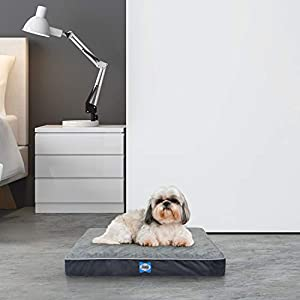 Sealy Ultra Plush Dog Bed with Orthopedic Foam and Washable Cover, Multiple Sizes