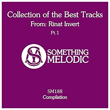 Collection of the Best Tracks From: Rinat Invert