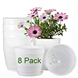 Flower Pots Indoor, ZOUTOG 6 inch Plastic Flower Planters with Drainage Hole and Tray, Pack of 8 - Plants Not Included