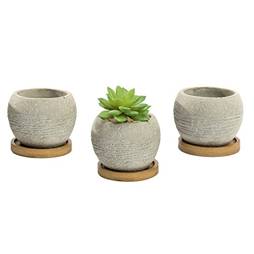 Nattol Succulent Planter, Mini Gray Cement Succulent Planter Pots with Display Wood Stand,Set of 3