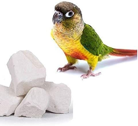 Pets Wizard B07VD93K96 Pets Wizard - Combo of Natural Mineral Block for Birds (250 gm) & Cuttle Fish Bone (100 gm)