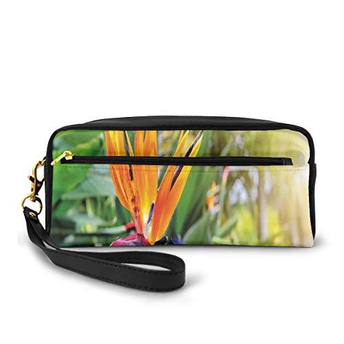 Pencil Case Pen Bag Pouch Stationary,Close-up Image of Strelitzia Reginae Bird of Paradise Flower Madeira Island Portugal,Small Makeup Bag Coin Purse