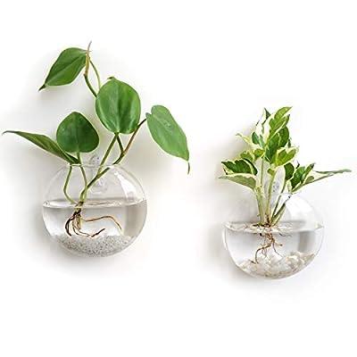Mkono Wall Hanging Plant Terrarium Glass Planter vase, Oblate