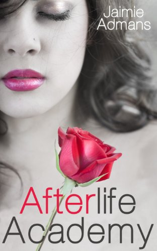 Afterlife Academy (English Edition)