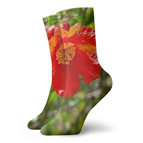 wonzhrui Calcetines unisex, árboles en flor de granada, calcetines suaves estampados Calcetines de equipo para todas las estaciones Calcetines cortos, largo (30 cm)
