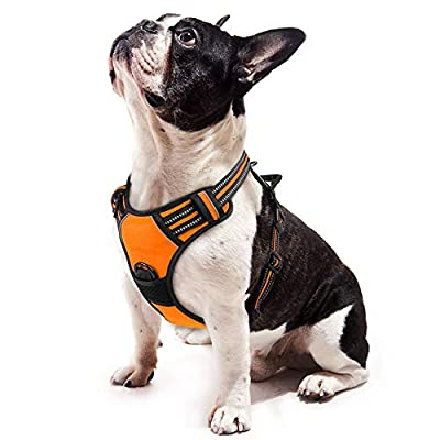 "rabbitgoo Dog Harness, No-Pull Pet Harness with 2 Leash Clips, Adjustable Soft Padded Dog Vest, Reflective No-Choke Pet Oxford Vest w/Easy Control Handle for Small Breed, Orange (S, Chest 15.7-27.6"")"