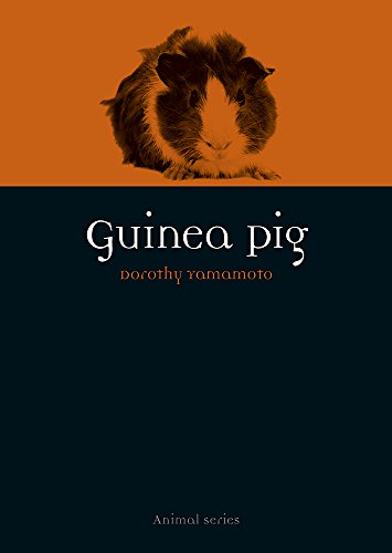 Guinea Pig (Animal) (English Edition)