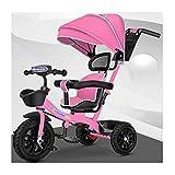 jiji sillas de Paseo Cochecito para niños Tricycle Bicycle, cochecitos de 1-6 años de Edad, Asiento Giratorio, Bicicleta con toldo, Carro de bebé Cochecito de bebé (Color : Pink)