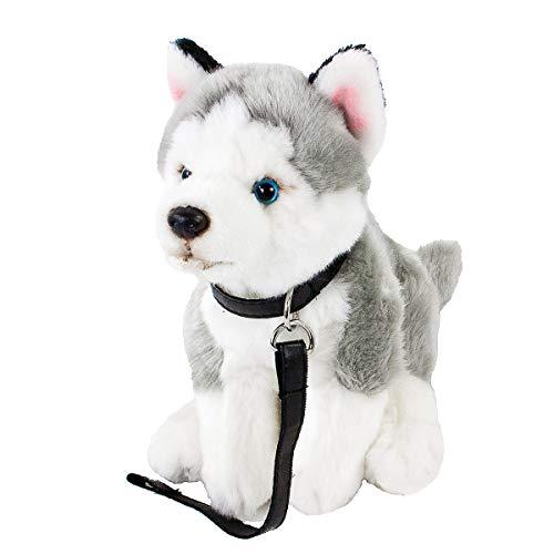 Teddys Rothenburg Kuscheltier Husky mit Leine sitzend grau/weiß 25cm (ohne Schwanz) Plüschhusky Plüschhund