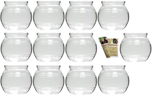 gouveo 12er Set Teelichtgläser Kugel und 28-seitige Flaschendiscount-Rezeptbroschüre Windlichter, Windlichthalter, Vase