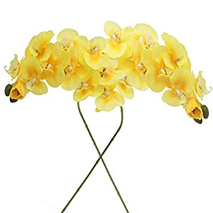 cn-Knight Artificial Flower 2pcs 28″ Long Stem Butterfly Orchid Big Size Lifelike Phalaenopsis Real Touch Moth Orchid for Wedding Bridal Home Décor Office Baby Shower Party Centerpiece(Yellow)