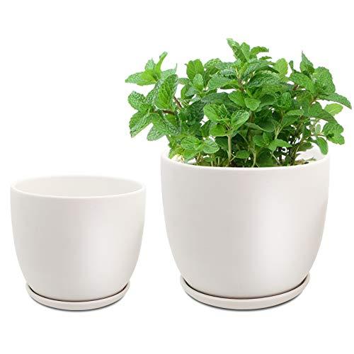 Supine Juego de 2 macetas de cerámica, diámetro de 15 y 18 cm, con bandeja con orificio de...