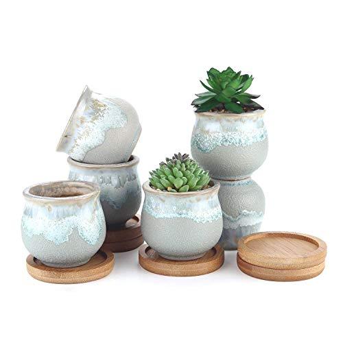 T4U vasetti per piantine vasi in Ceramica con piattini Set di 6 per Piante in Miniatura