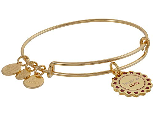 Alex and Ani Color Infusion Trust in Love Expandable Wire Bangle Red 1 One Size
