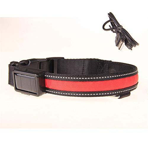 Collar de perro LED, Carga solar collar de perro collar recargable USB Seguridad Noche ajustable collar del perro casero del USB LED de luz luminosa para perros ( Color : Red , Size : S 35 40 cm )