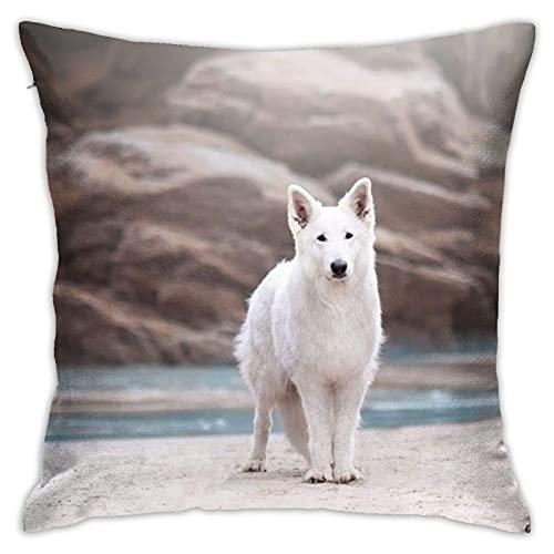 XCNGG Swiss-Shepherd-Widescreen-Wallpapers- Funda de Almohada Decorativa para el hogar para Sala de Estar, Dormitorio, sofá, Silla, Funda de Almohada de 18 x 18 Pulgadas, 45 x 45 cm