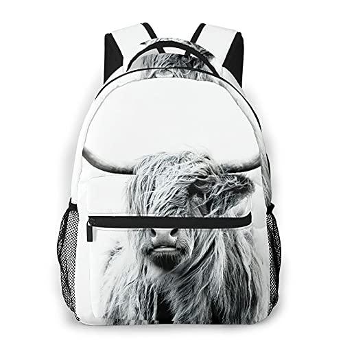 Kanxdecor Zaino casual,Mucca manzo Highland Mucca Highlander Animale, borsa da viaggio con cerniera, per affari, scuola, lavoro, borsa per laptop 16 'X11.5'X8'