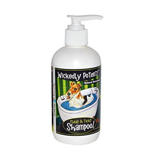 All natural Fleas & Ticks shampoo