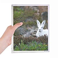 白ウサギの科学は自然の風景 硬質プラスチックルーズリーフノートノート