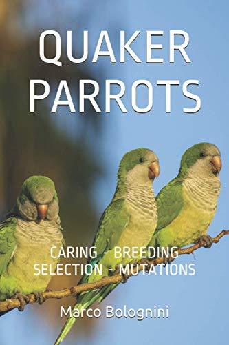 Quaker Parrots: Caring - Breeding - Selection - Mutations