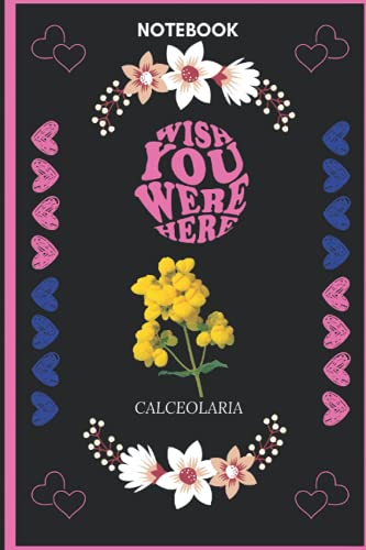 Notebook Wish You Were Here Calceolaria: Calceolaria Lover Blank Lined Notebook Funny Gifts Of Christmas Thanksgiving, Mother's Day For Cute Calceolaria Lover Women Boys And Kids.