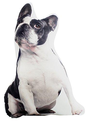 Fisura Cojín, diseño 3D Bulldog francés, 39 x 58 cm, Multicolor