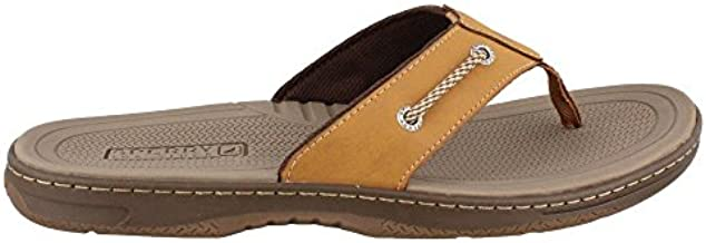 Sperry Men's Havasu Sandal, tan, 12 Medium US