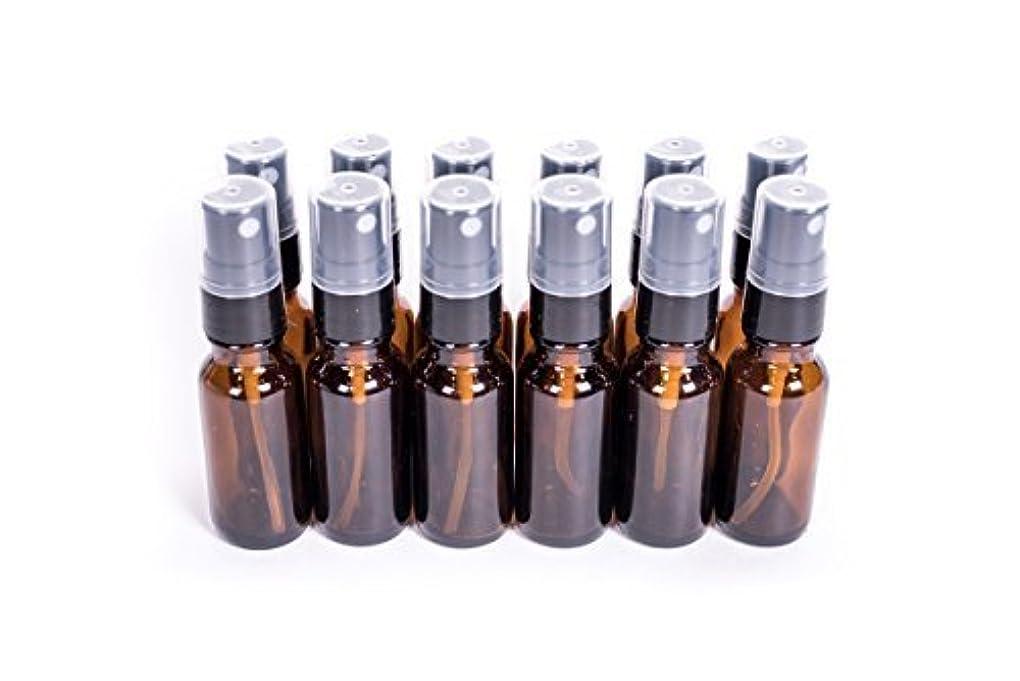 川反対認可Everything4Oils 1/2oz(15ml) Amber Glass Bottle with Pump for Essential Oils (. [並行輸入品]