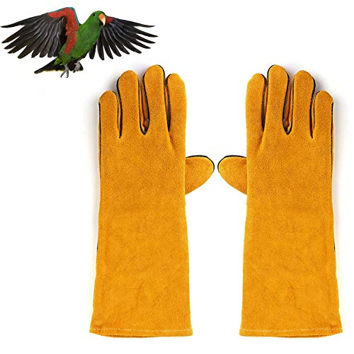 LY-Rack Haustier Anti-Biss/Kratzer Safety Work Treatment Handschuhe, für Graupapagei Sonnensittich, Hund Katze Vogel Schlange Papagei Eidechse Wildlife Protection Handschuhe