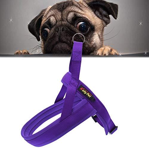 Haustier Pet Zugseil Haustier Hund Nylon bequem O-Ring A7 Brustgurt Führs, Größe: XS, Einstellbereich: 42-50cm (Schwarz) (Color : Purple)