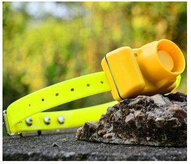 Petdiary Collare per Cani da Caccia Collar-Dog Collare Incorporato Beeper Sound Dog Beeper Sport Training