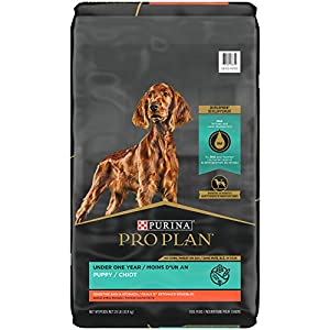 Purina Pro Plan Probiotic, Sensitive Stomach Dry Puppy Food, Sensitive Skin & Stomach Salmon & Rice Formula – 24 lb. Bag