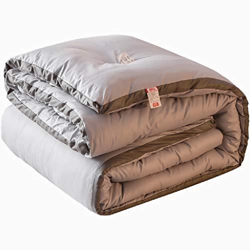 QUILT Doppel Warm Thick Winter, 100{d73aaec7d8bdfb49a74e8c0d5872e70eeaf2ee7aa8a09de636f8f0d13bd9f23b} Baumwolle Shell mit Ecklappen, Tröster haben den perfekten Weichheitsgrad und Festigkeit, Warm Fluffy hypoallergen (Größe : 180 * 200cm(3.5kg))