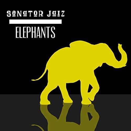 Senator Jaiz