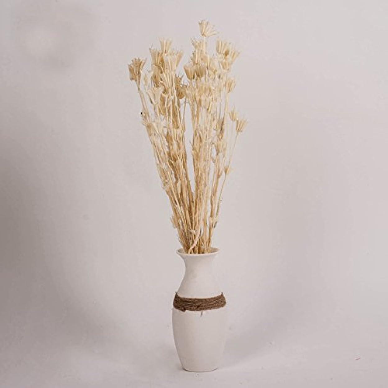 トランザクションロースト保守的天然ドライフラワー 花 植物 ミオソティス 装飾 インドア アウトドア 室外 室内 フラワー 飾り デコレーション(ベージュ 1ブーケ(10本))