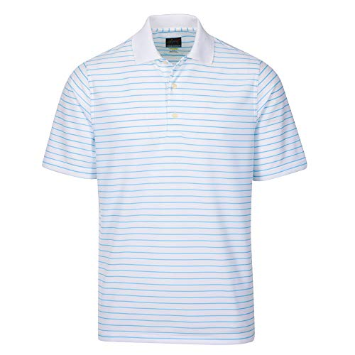 Greg Norman Protek Micro Pique Stripe Polo Manches Courtes Homme, White/Coast Blue, XX-Large