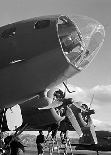 A History Of The B-17 Flying Fortress in Over 400 Photographs, Stories And Analyisis: Including The U.S. Army Air Forces in World War II: Combat Chronology ... American Air Power in WWII (English Edition)