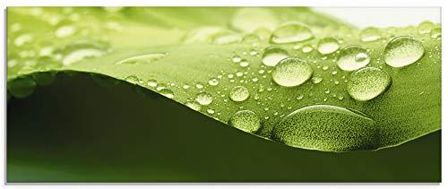 Artland Glasbilder Wandbild Glas Bild einteilig 125x50 cm Querformat Natur Pflanzen Blätter Wassertropfen Regen S7DU