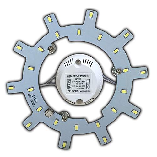 Module LED – Kit de transformation (intensité variable/non variable) pour plafonnier - Anneau lumineux - Plafonnier rond - Lampe tube (blanc chaud/lumière du jour) 12 W, blanc lumière du jour.