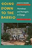 Going Down To The Barrio: Homeboys and Homegirls in Change