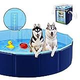 YAOBLUESEA Piscina para Perros, Plegable PVC Piscina Bañera para Gatos Animales Bebes Rigida, Adecuado para Interior y Exterior (80x20cm)