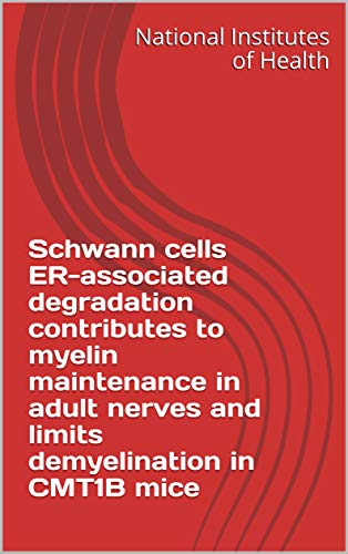 Schwann cells ER-associated degradation contributes to myelin maintenance in adult nerves and limits demyelination in CMT1B mice (English Edition)