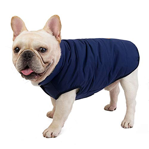 SMALLLEE_LUCKY_STORE Pet Fleece Lined Bomber Vest Jacket Down Coat for Bulldog Fat Dogs Winter Warm French Bulldog Clothes,Navy Blue Size S